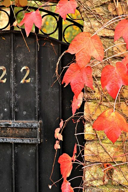 Home Maintenance – Autumn To Do List