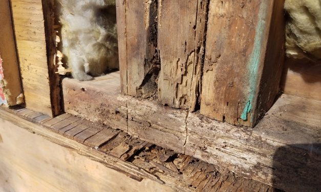 Wood Rot in Your Home